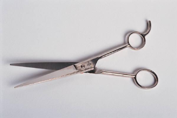 scissors-hair.JPG