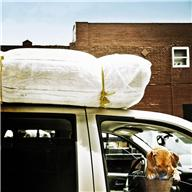 car - stuff on top and dog